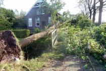 29 oktober 2017 boom geveld door storm